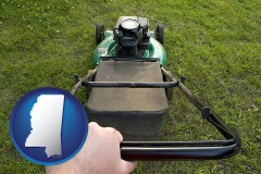 mississippi using a power lawn mower to maintain the appearance of a lawn